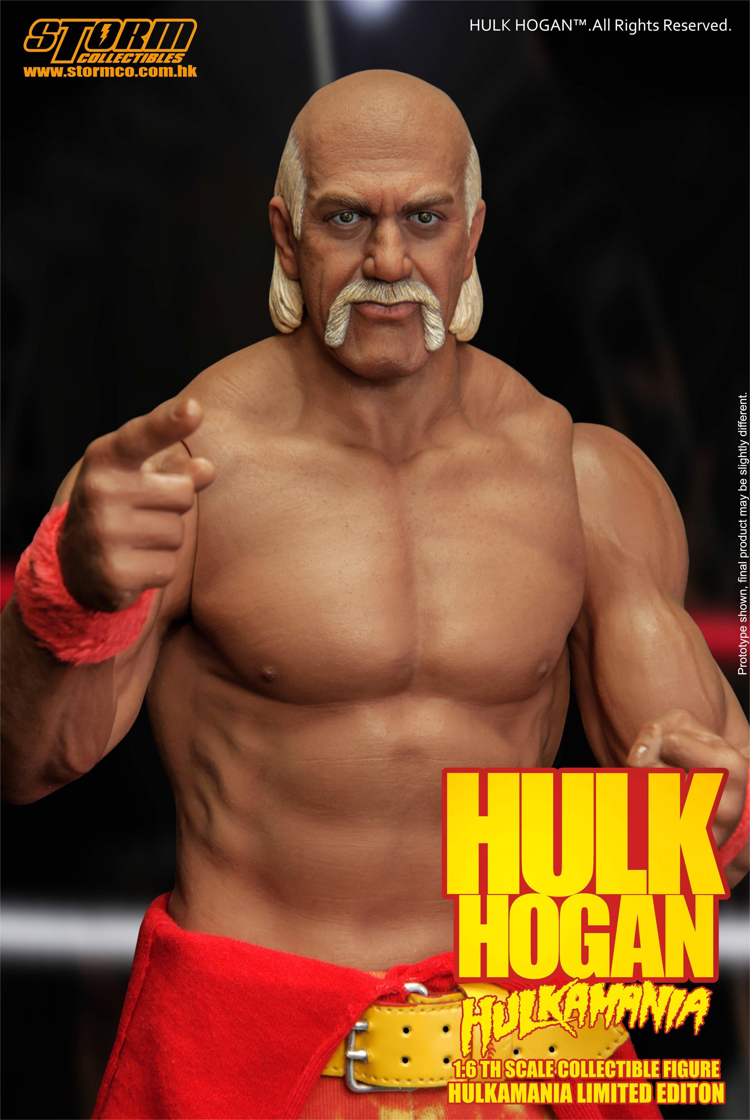 Hulk hogan celebrity championship wrestling online